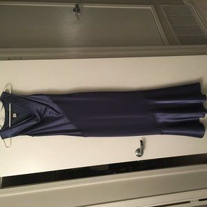 Alex Evenings dress (size 4)